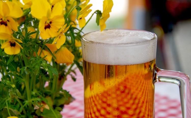 Krakow food tour beer